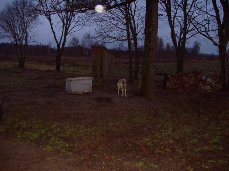 letland-november-2007-047