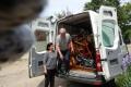 Ledsagerrejse til Rumænien maj 2017 -Dorthes ting