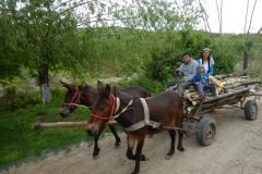 Ledsagerrejse til Rumænien maj 2017